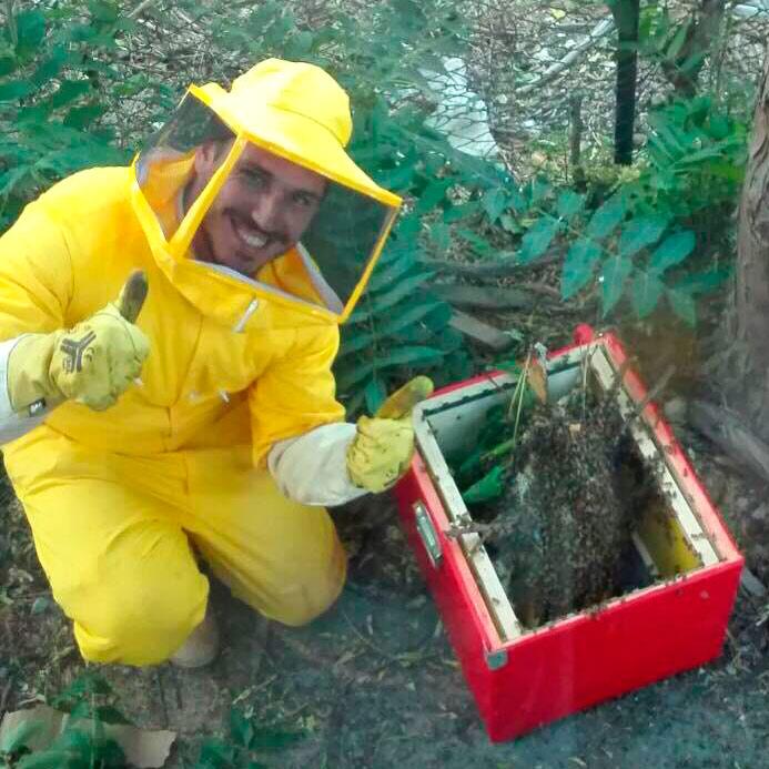 Recupero Api 4 - recupero api milano