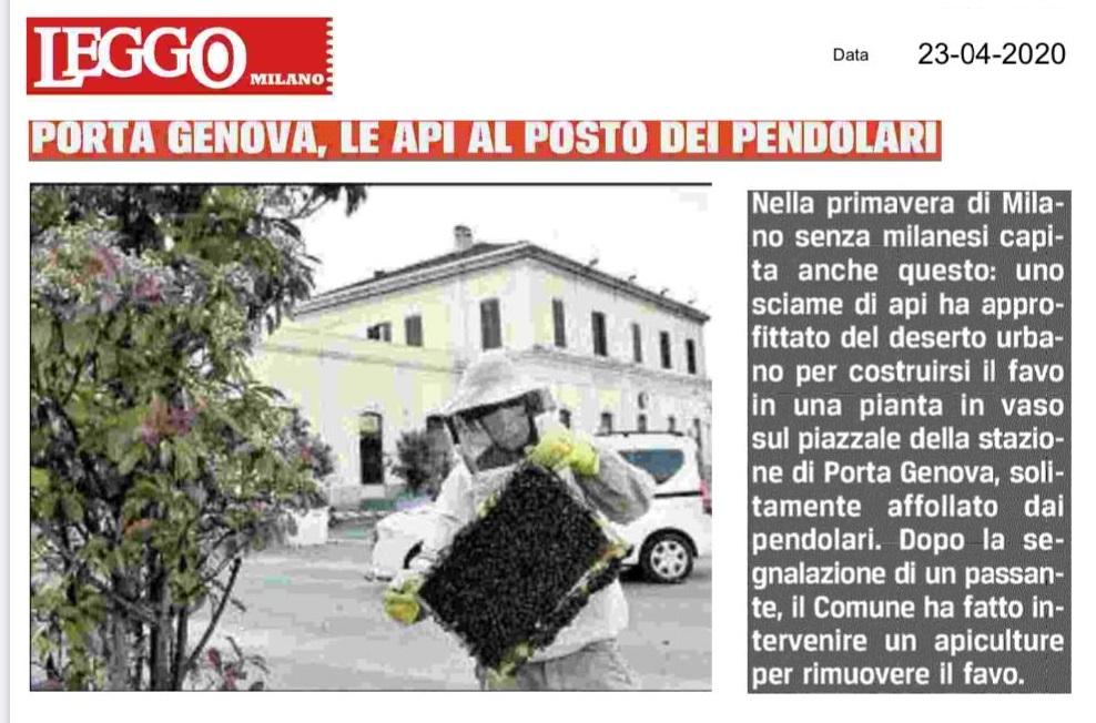 Giornali e Media 2 - recupero api milano