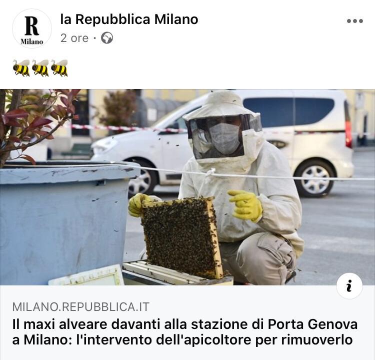Giornali e Media 1 - recupero api milano